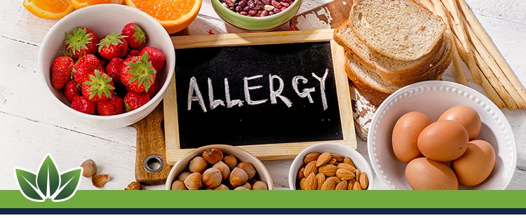Food Allergy Treatment in Scottsdale, AZ